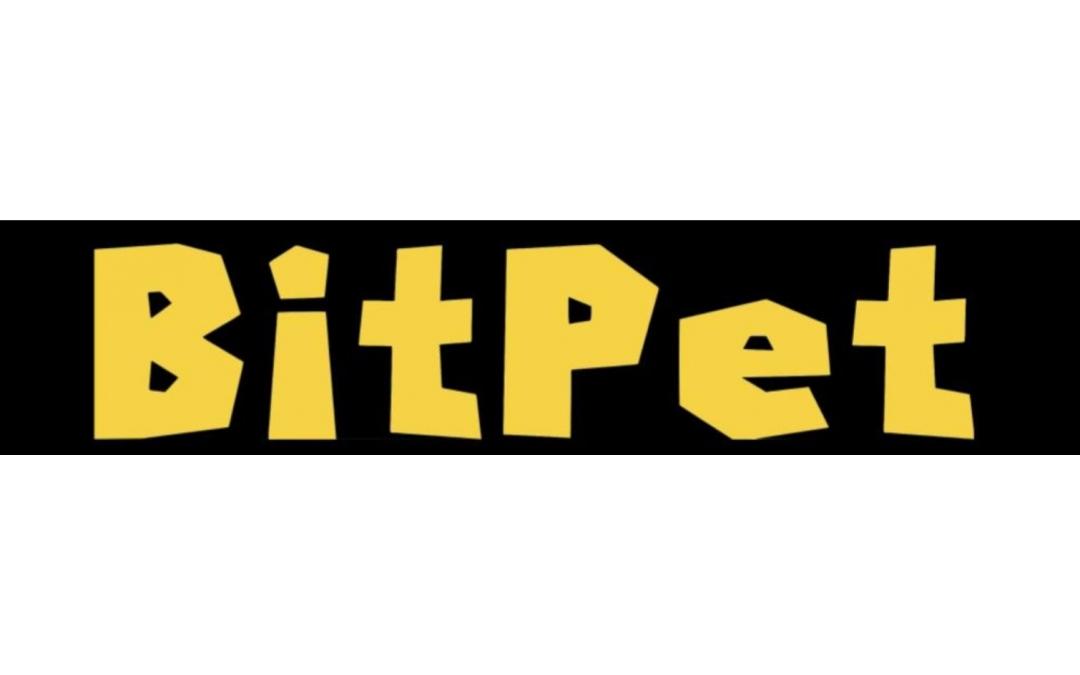 Utvikler/CTO i BitPet